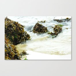 The Flow Of The Sea Canvas Print
