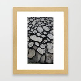 Nature's Geometry Framed Art Print