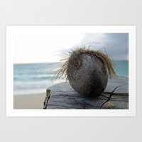 coconut wishes Art Prints featuring Coconut by Devin Jones Photography