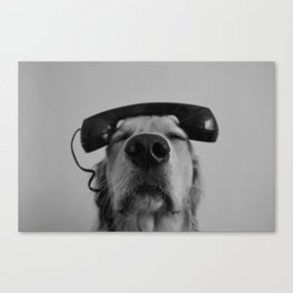 Hello, This is Dog Canvas Print