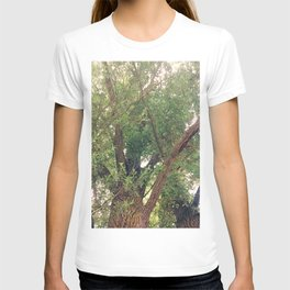 Rushing of the Leaves Photography T-shirt