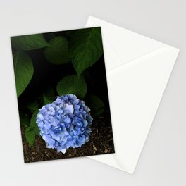 Moody Blue Hydrangea Stationery Cards
