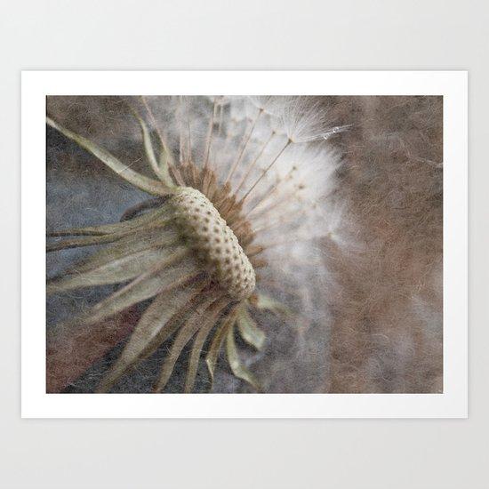 Dispersal Art Print