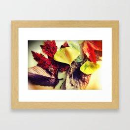 Leaf Mix Scattered I Framed Art Print