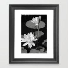 Black & White Lilypad Framed Art Print