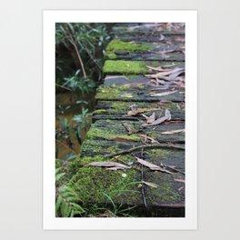 Mossy Bridge Art Print