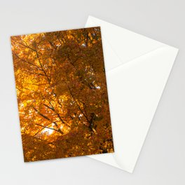Coos County Autumn #50 Stationery Cards