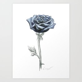 Rose 03 Botanical Flower * Blue Black Rose : Love, Honor, Faith, Beauty, Passion, Devotion & Wisdom Art Print