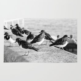 Birds and People relaxing at the beach Rug