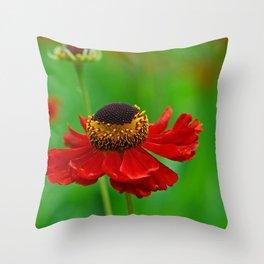 Summer flowers 0219 Throw Pillow