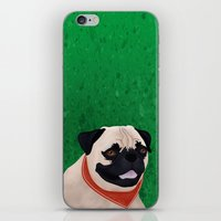 pug iPhone & iPod Skins featuring Pug by Nir P