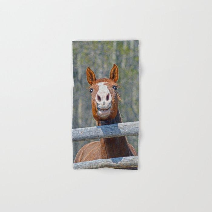Horse Humour Hand & Bath Towel