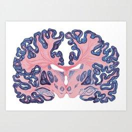 Gyri and Swirls of Human Brain Art Print