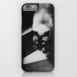 Friends on the Stairs, Siamese cat and woman passing in the night black and white photograph iPhone Case