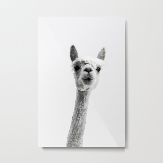alpaca #society6 #decor #buyart Metal Print