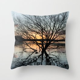 Sunset in the Los Padres lagoon. Throw Pillow