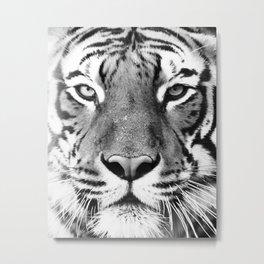Tiger, Animal, Scandinavian, Minimal, Trendy decor, Interior, Wall art Art Metal Print