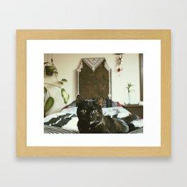 queen of the castle Framed Art Print
