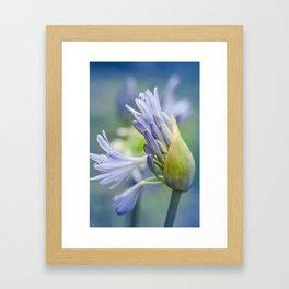 Love Flower Framed Art Print