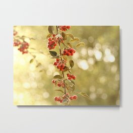 Red Blossoming Berries Growing from Trees Metal Print