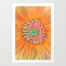 Daisy Tones Art Print