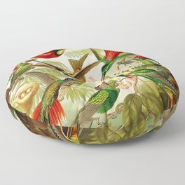 Vintage Hummingbird Illustration Floor Pillow