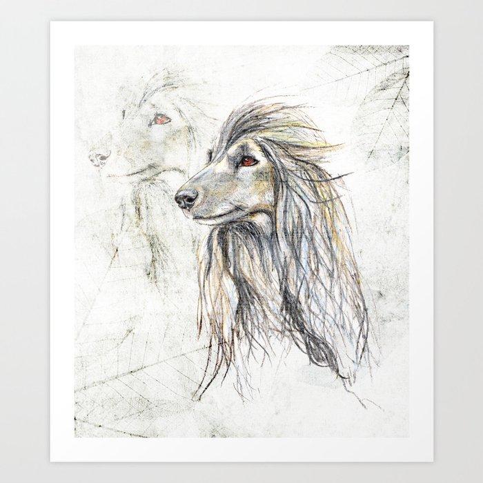 Afghan Hound Art Print by lisamcloughlinart | Society6
