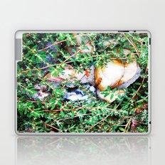 Forgotten Garden 1 Laptop & iPad Skin