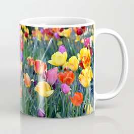 TULIPS IN MY GARDEN - SPRING IS HERE Coffee Mug