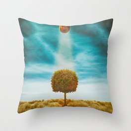 Earth Reflection of Universe Throw Pillow