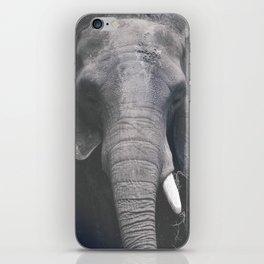 ELEPHANT PHOTOGRAPH - BLACK AND WHITE iPhone Skin