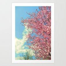 Spring pink flowers. Vintage Art Print