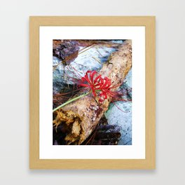 Bump on a Log Framed Art Print