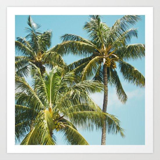 Coconut Palm Trees Sugar Beach Kihei Maui Hawaii Art Print
