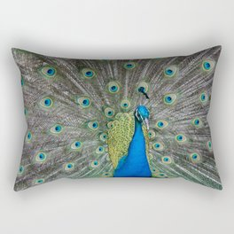Fabulous and I know it Rectangular Pillow