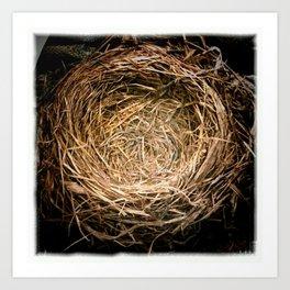a handmade nest Art Print