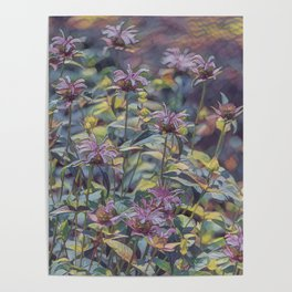 Abstract Thistle Poster