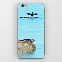 Seal pup and Cormorant getting some Sun  iPhone Skin