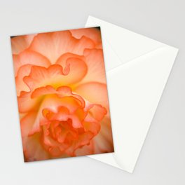 Creamsicle Begonia  Stationery Cards
