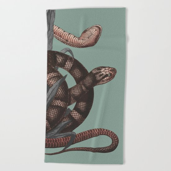 Snakes (animals collection) Beach Towel