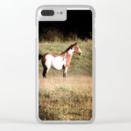 Pinto stallion Clear iPhone Case