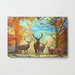 Autumn Forest Watch Metal Print