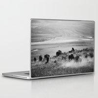 buffalo Laptop & iPad Skins featuring BUFFALO by Eliesa Johnson