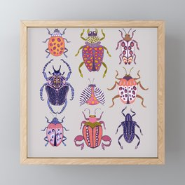 Assorted Beetles Framed Mini Art Print