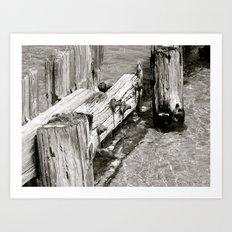 Docked Art Print