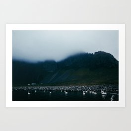 swan lake in iceland Art Print