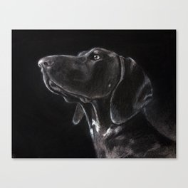 German Shorthaired Pointer Profile Canvas Print