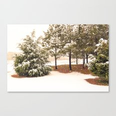 Sprinkled with Snow Canvas Print