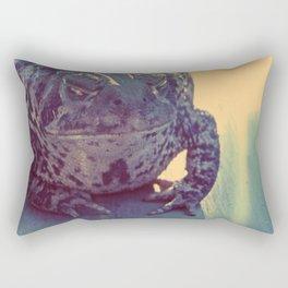 Leeper Rectangular Pillow