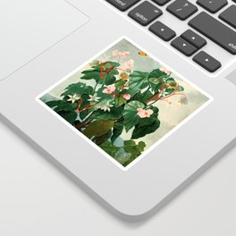 Pink Floral The Oblique-Leaved Begonias : Temple of Flora Sticker